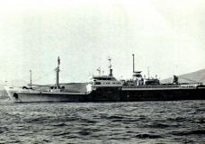 NAVROM – O flotă pierdută în furtuna tranziţiei